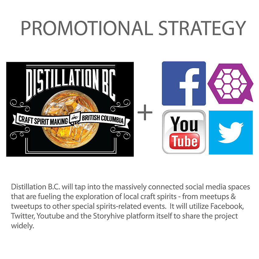 Promo Strategy - all platforms