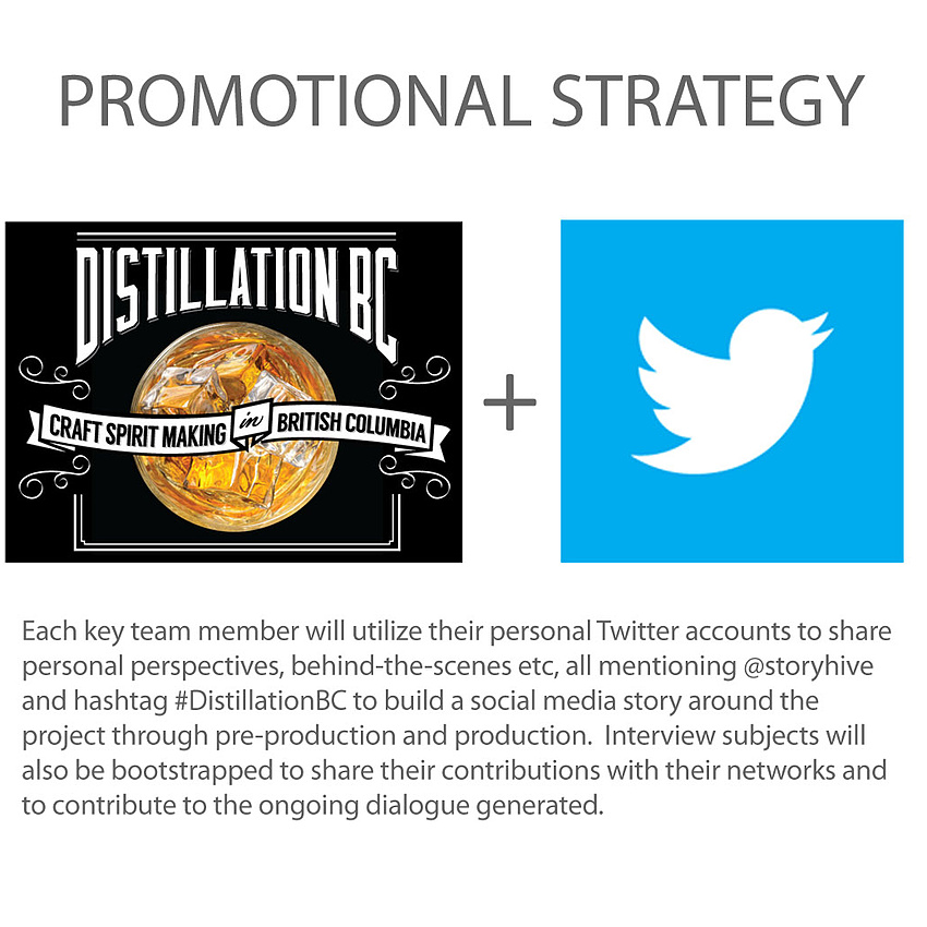 Promotional strategy - Twitter