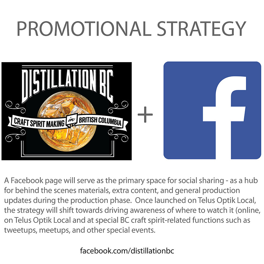 Promotional strategy - Facebook