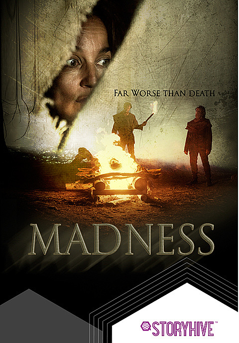 MADNESS Box Art image
