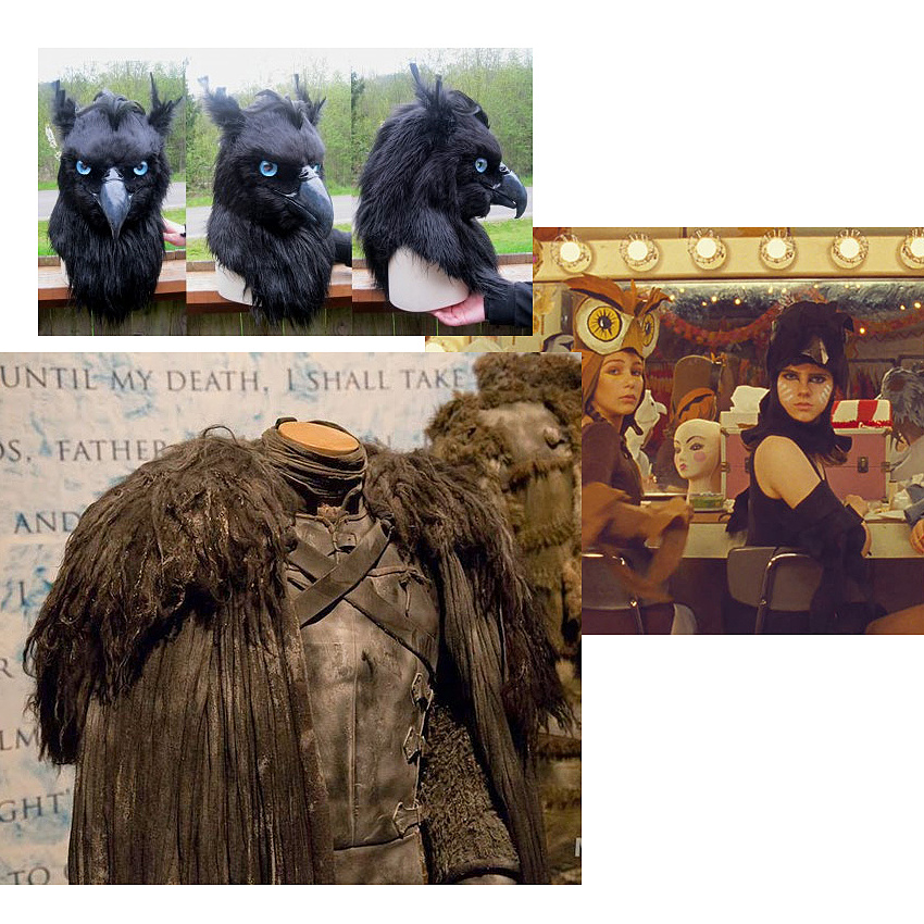 Costume Inspiration - Osprey