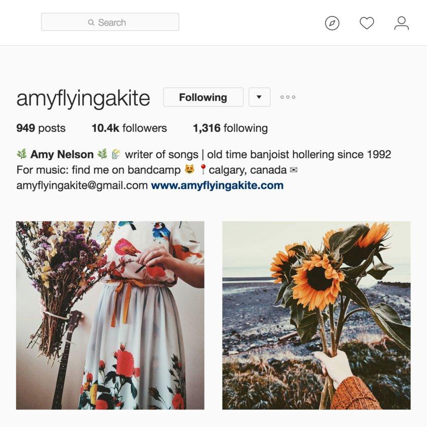 Amy's Social Media Reach