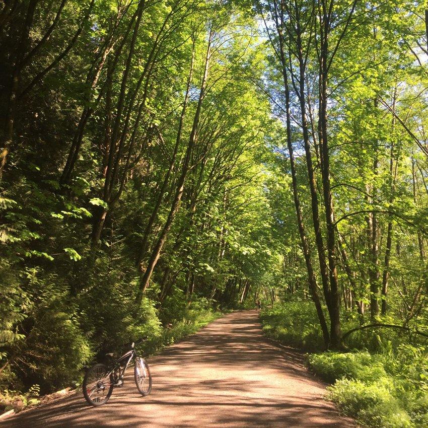 Metro Vancouver's Green Future