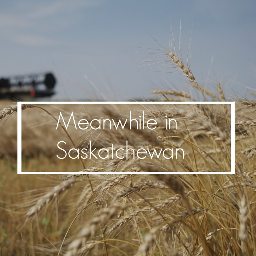 Meanwhile in Saskatchewan
