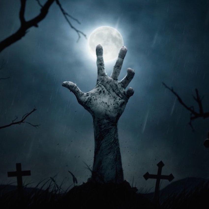 Horror / Thriller Allure
