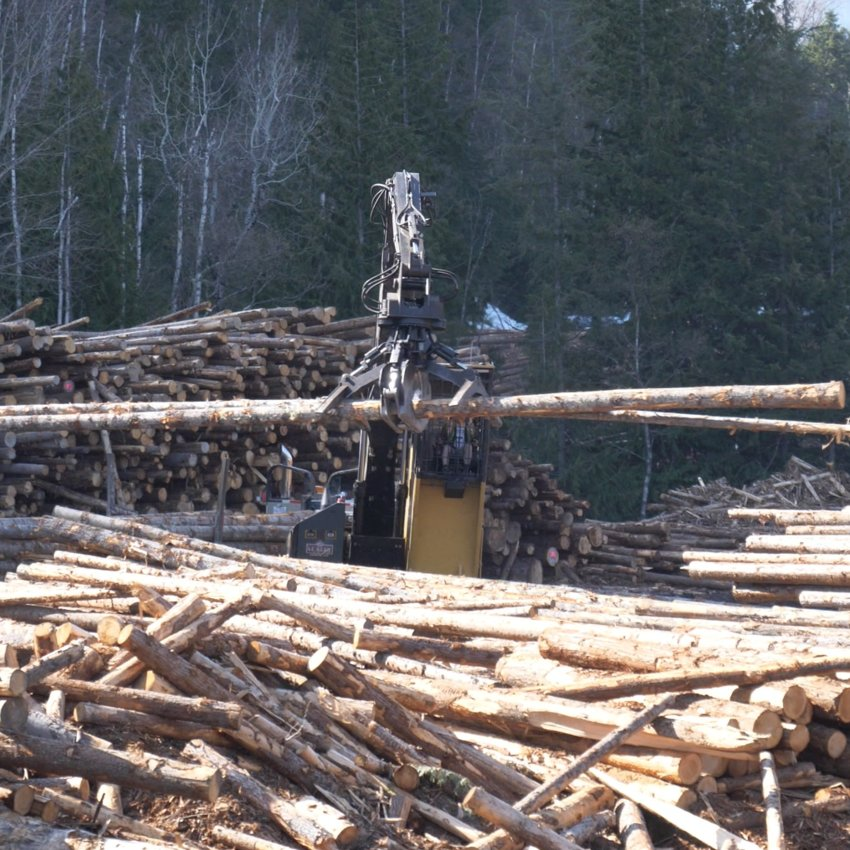 Images of the logging