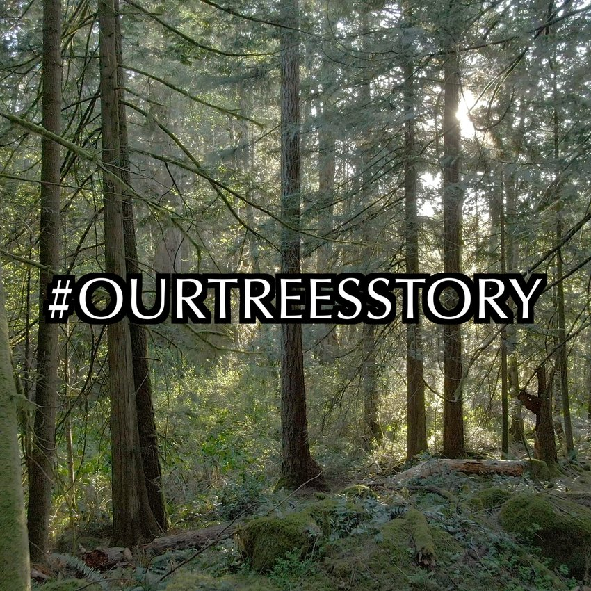 #OurTreesStory