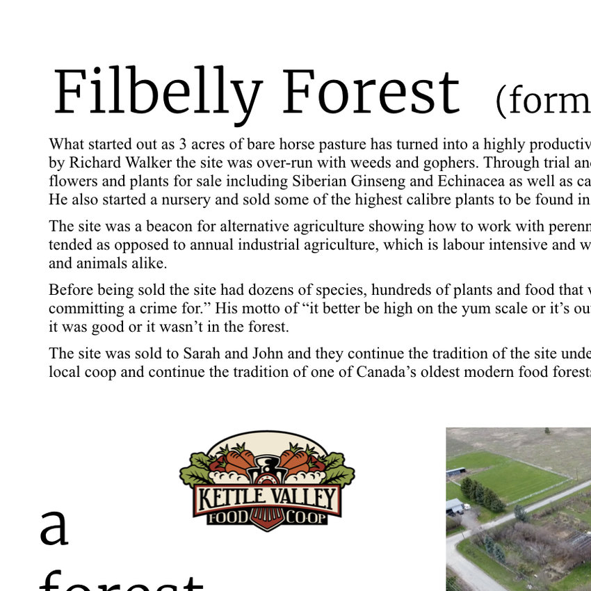 Filbelly Forest