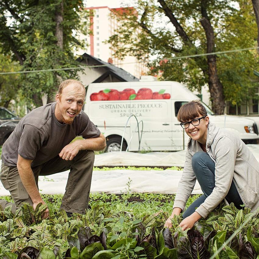 RECLAIM URBAN FARM (series episode)